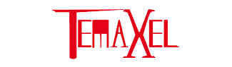 Our Temaxel success story in family business restructuring