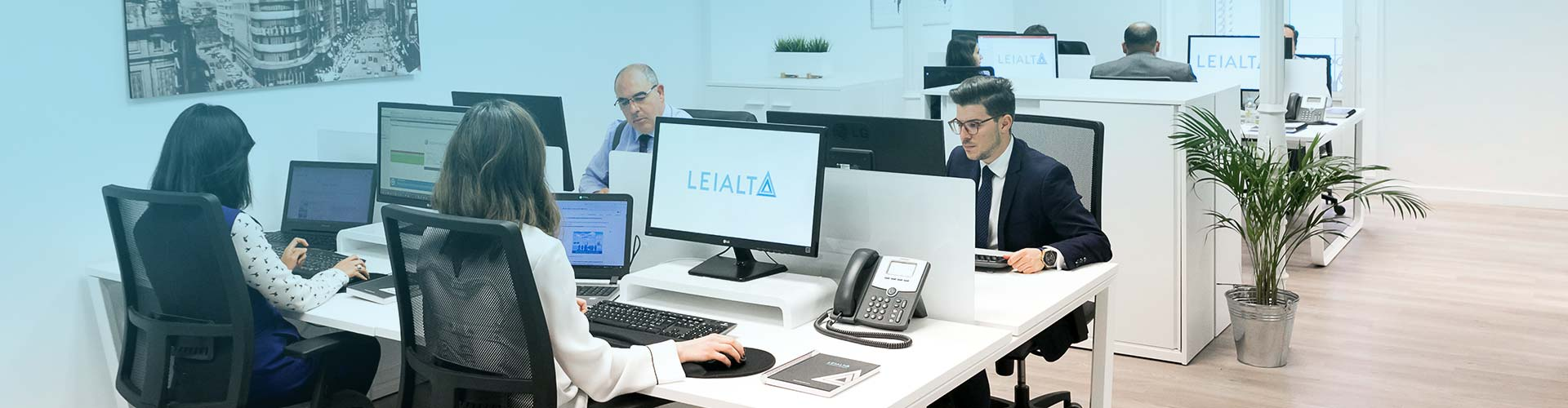 Meet with Leialta all the Business Consulting for your cmpanyo